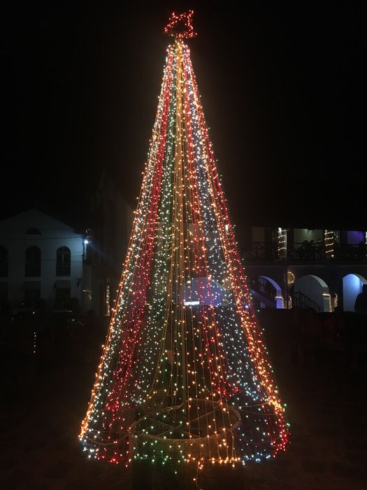 Christmas Tree at Galle Fort